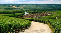 Идея на каникулы: самые интересные предложения по Франции от UUU Luxury Сoncierge