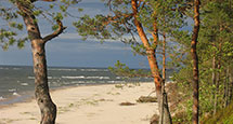 Идея на каникулы: «разбить лагерь» в Four Seasons Tented Camp Golden Triangle