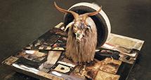 Art Weekend в мире: это неприлично! Главные выставки декабря от Европы до Австралии