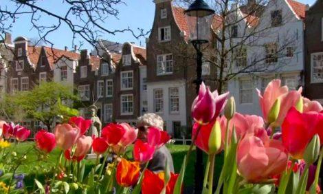 Куда поехать весной. Королевство Нидерландов: цветочные «лазаньи» и велопрогулка с Ван Гогом