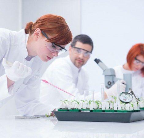 Блог редакции: британские ученые — самые ученые в мире