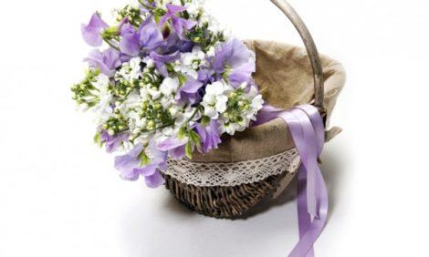 Shopping: Флористический бутик «Цветочная галерея Турандот»
