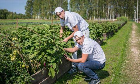 Международный фестиваль Garden: за чистый вкус