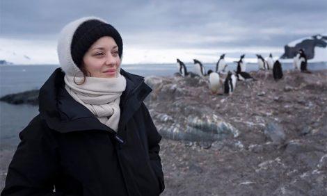Фото дня: Марион Котийяр в экспедиции в Антарктиде