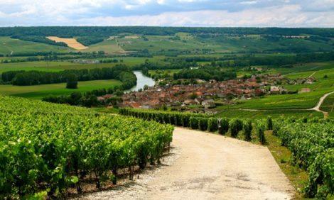 Идея на каникулы: гастрономия, вино, драгоценности и парфюмерия «в одном флаконе» — открываем новый аромат Франции