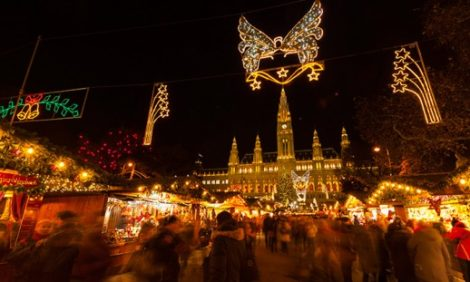 Новый год. Идея на каникулы: вальс и фейверверк в праздничной Вене