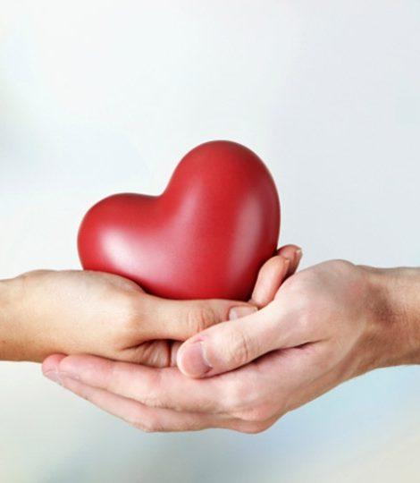 Благотворительность с Катей Бермант: Всемирный день сердца