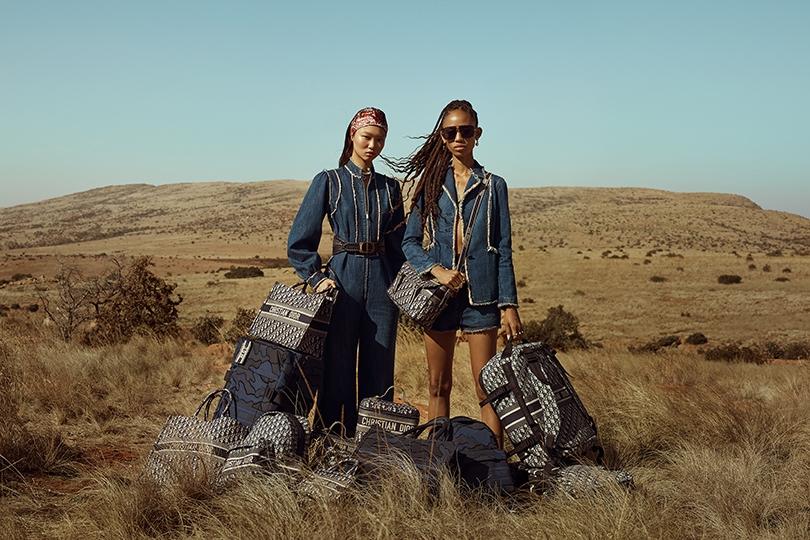 Shoes & Bags Blog: дама сдавала в багаж… чемодан и саквояж [от Dior]