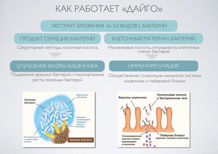 Иммунитет VS коронавирус: как помочь защитным силам организма