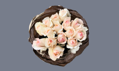 #PostaБизнес: «Фея розы» — скидка 50% на все букеты