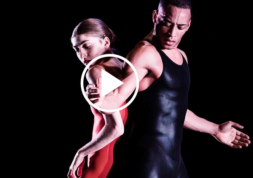 PostaDance: Нидерландский театр танца покажет балет Short Cut онлайн