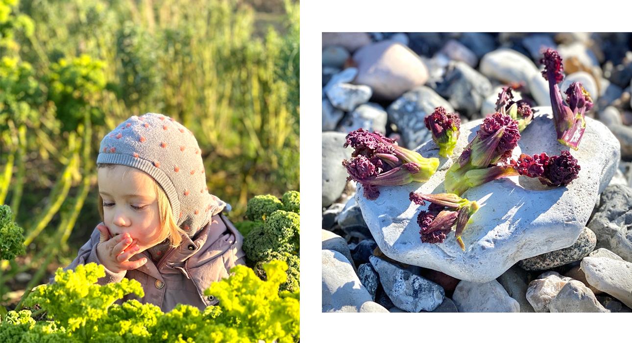 #PostaKidsGourmet: Расмус Кофоед, шеф-повар ресторана Geranium — об экологичном подходе к детскому питанию