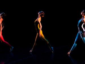 #PostaDance: Нидерландский театр танца покажет балет Short Cut онлайн