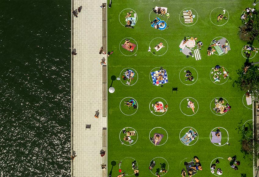 Круги на полях: опыт социального дистанцирования в Domino Park