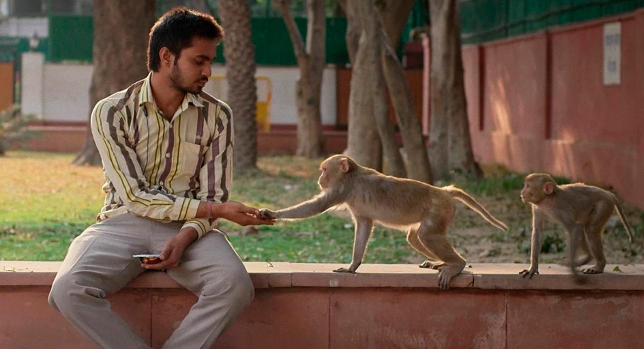 Среди игровых лент будет интересно посмотреть индийскую драму о профессиональных отпугивателях обезьян Eeb Allay Ooo! и израильский психологический триллер Losing Alice.