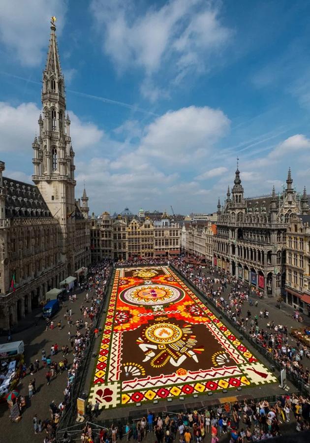 Миллион разноцветных бегоний: как создается брюссельский цветочный ковер, показали на видео