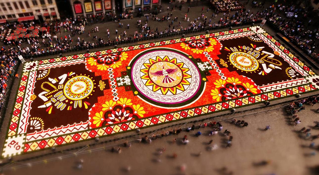 МВидео дня. Миллион разноцветных бегоний: как создается брюссельский цветочный ковериллион разноцветных бегоний: как создается брюссельский цветочный ковер, показали на видео
