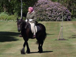 Фото дня: Елизавета II катается на пони в Виндзорском замке