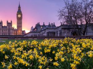 Чистый воздух локдауна: британские астматики почувствовали себя лучше из-за снижения трафика во время изоляции