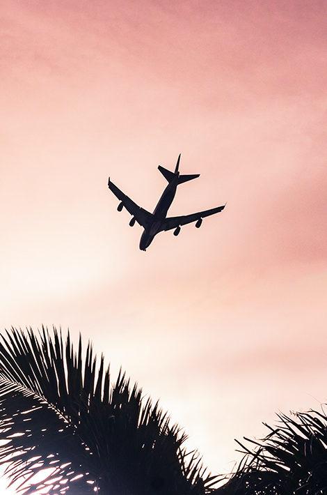 #TravelБизнес: список стран, в которые можно будет улететь в ближайшее время