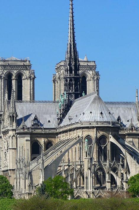 Фермы не будет: собор Парижской Богоматери восстановят в историческом виде