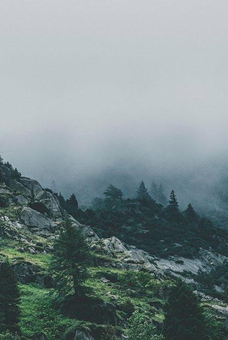Статус Куштау как охраняемой природной территории получил поддержку Минприроды