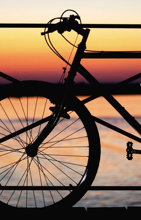 В Ленинградской области построят велодорожку в Финляндию
