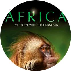 «Африка» (2013)