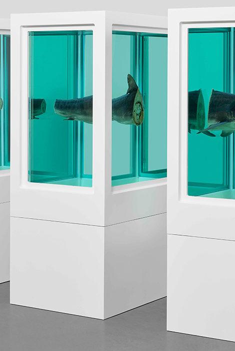 Большая выставка ранних работ Дэмиена Херста откроется в Лондоне