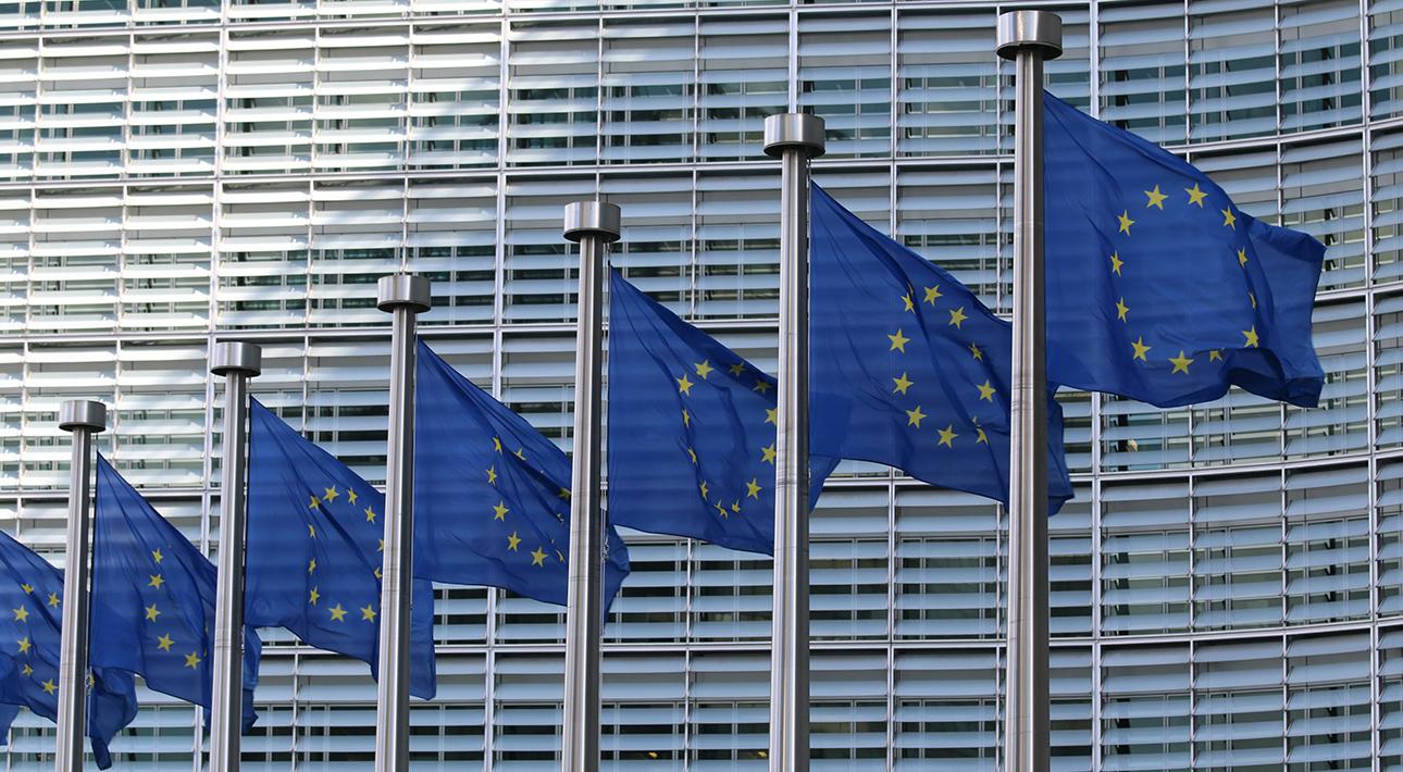 как получить гражданство ЕС и почему игра стоит свеч