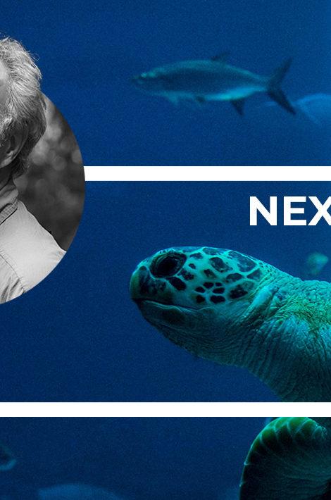 Eco Living. «Нормально пользоваться природой — но ненормально ее разрушать»: слушаем выступление знаменитого зоолога и эколога Карла Сафины
