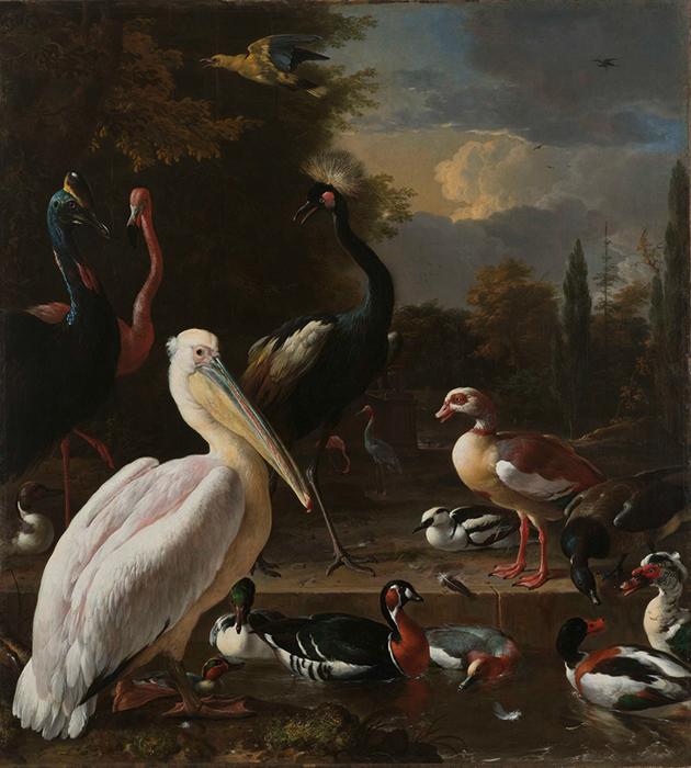 «Пеликан и другие птицы у пруда», Мельхиор де Хондекотер, 1680«Пеликан и другие птицы у пруда», Мельхиор де Хондекотер, 1680