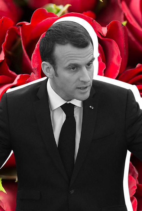 #PostaОбщество: Эммануэля Макрона раскритиковали за чрезмерные траты на цветы для Елисейского дворца
