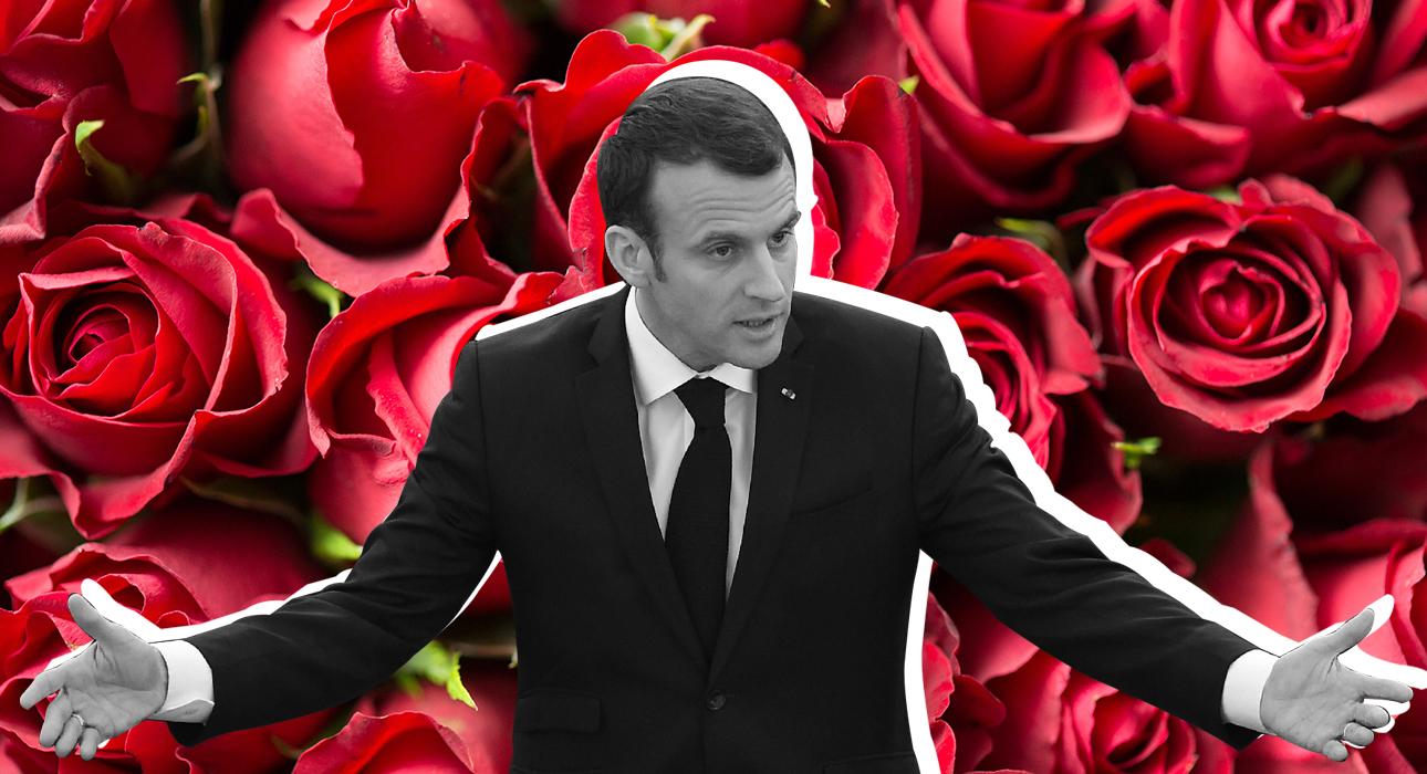 Эммануэля Макрона раскритиковали за чрезмерные траты на цветы для Елисейского дворца