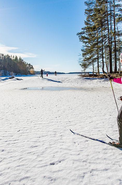Eco Living: финский город Лахти стал Зеленой столицей Европы 2021