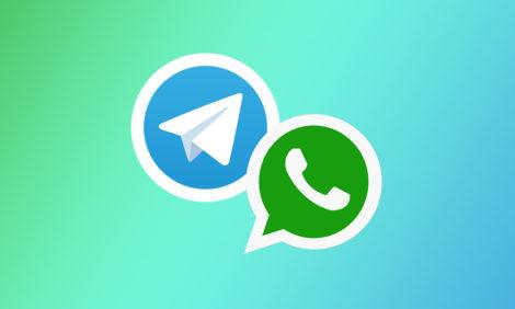 Не согласен: пользователи массово переходят с WhatsApp на Telegram — в том числе в США