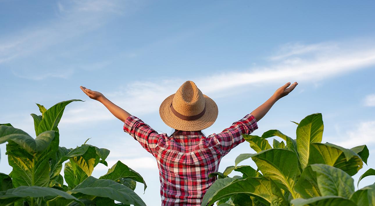 Сотрудничество с местными фермерами