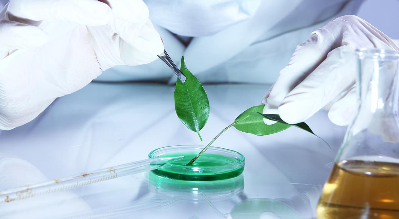 Eco Living: как выбрать клинику, которая наносит минимум вреда окружающей среде