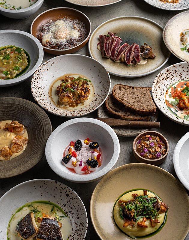 5 причин посетить ресторан Meal