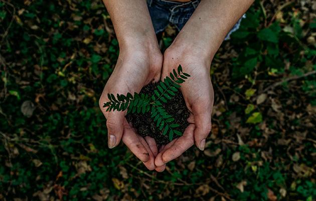 Eco Living: День климата Volkswagen и другие зеленые инициативы Audi