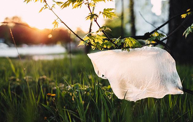 #PostaНаука: американские ученые создали биоразлагаемый пластик