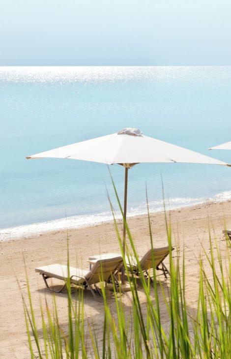 TravelБизнес: «ресайклинг виз», пенсия для овчарок и новости лучших отелей