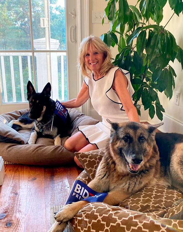 Джилл Байден носит сумку с портретами любимых собак