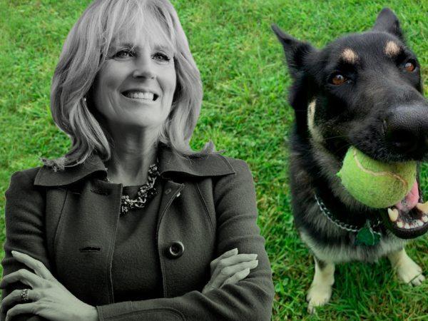 Shoes & Bags blog: Джилл Байден носит сумку с портретами любимых собак