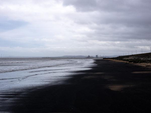 Eco Living: разлив нефтепродуктов в республике Коми может привести к загрязнению Баренцева моря
