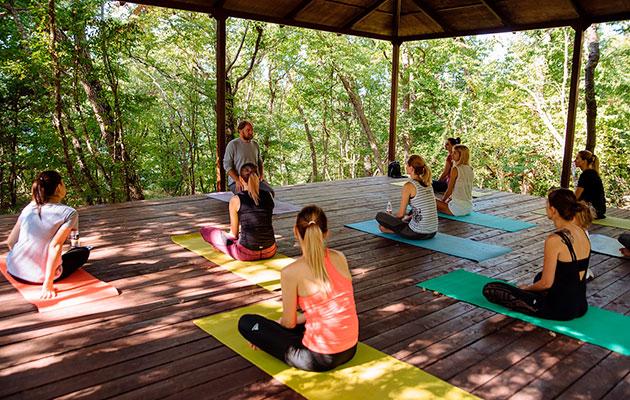 Туристический лагерь в лесу в шаговой доступности от усадьбы «Круглое озеро» и йога-кемпинга «Эколоджия»
