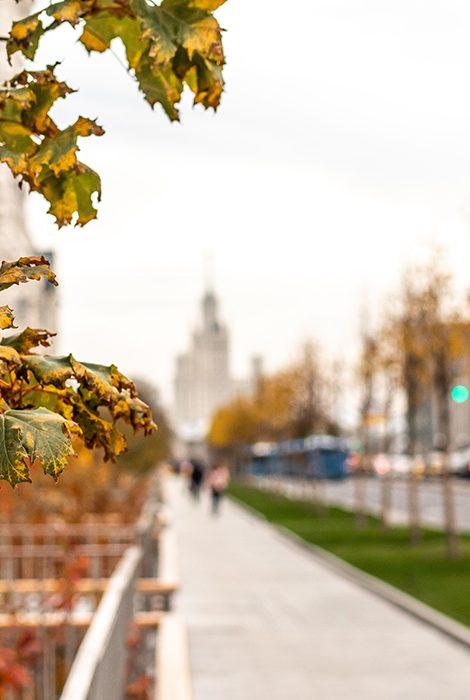 Covid-19. Что нового: какие ограничения вводят в Москве, Санкт-Петербурге и не только