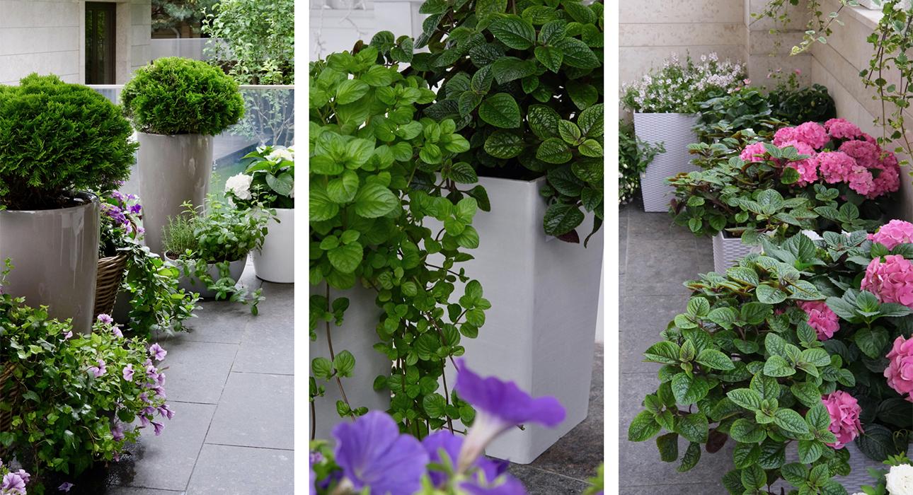 Декоратор Лидия Симонова — о трендах в озеленении, сервировке и уютной реальности