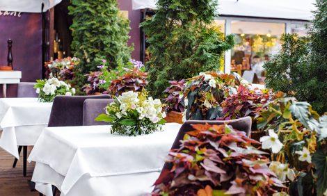 Едим не дома: новый ресторан «4/1» в Калашном переулке, музыкальные уикенды в Uhvat и «голодный шеф» в Vasilchuki Chaihona № 1