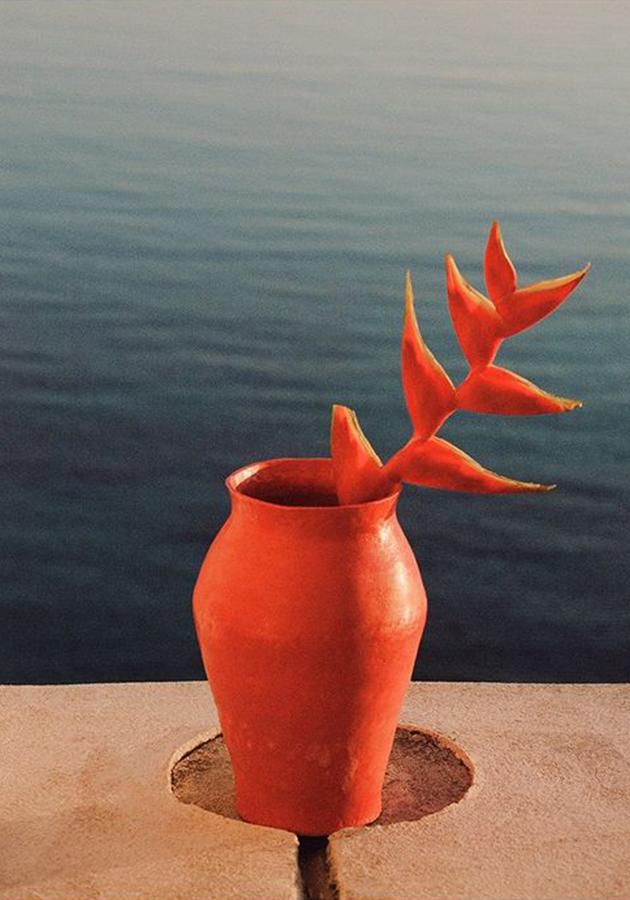 Home Decor: коллекция керамики Saint Laurent, вдохновленная Садом Мажорель в Марокко